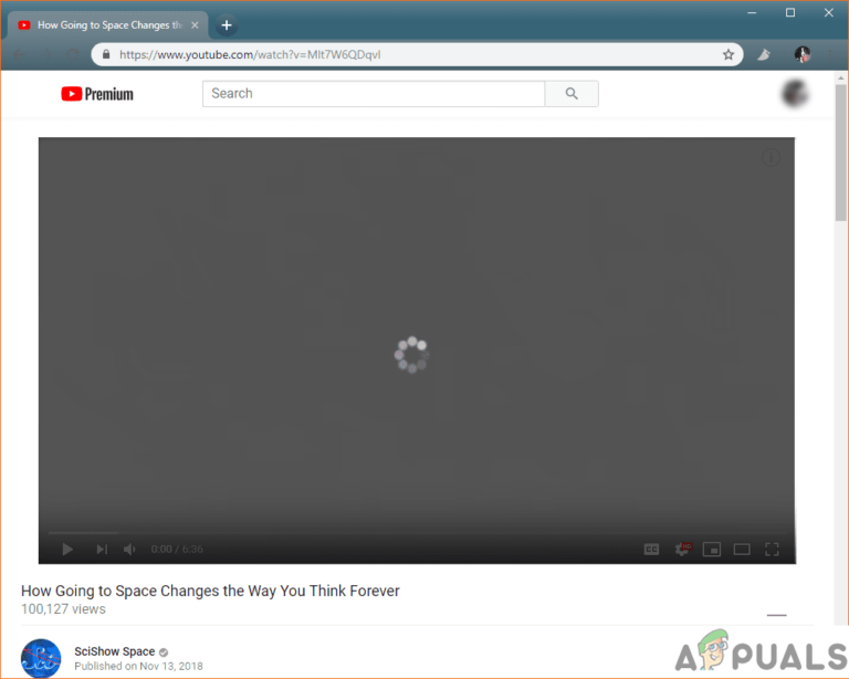 Wie behebe ich Videos, die nicht in Firefox abgespielt werden?