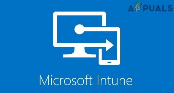 Wie behebt man, dass Microsoft Intune nicht synchronisiert?