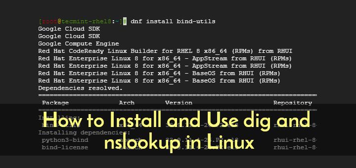 Installieren und Verwenden von dig- und nslookup-Befehlen unter Linux