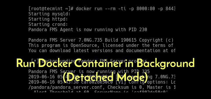 Führen Sie den Docker-Container im Hintergrund aus (abgetrennter Modus).