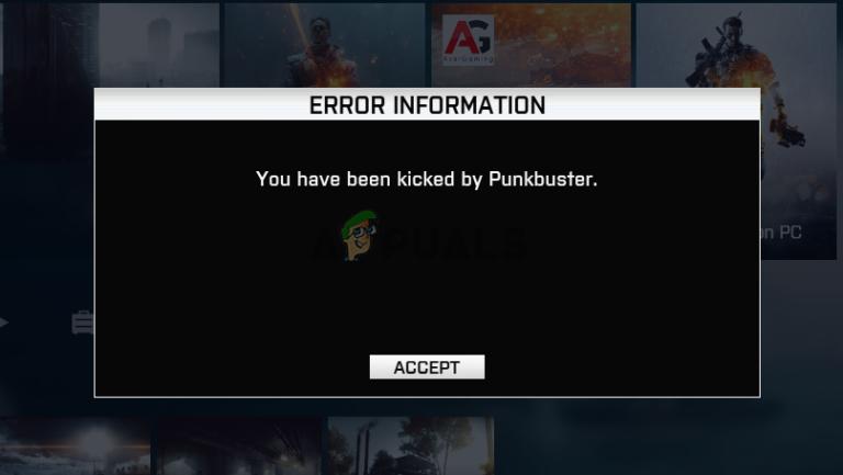Wie behebe ich den durch PunkBuster ausgelösten BF4-Fehler unter Windows?