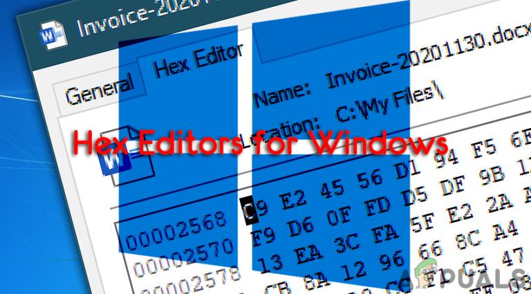 Einfach zu bedienende HEX Editoren für Windows 10