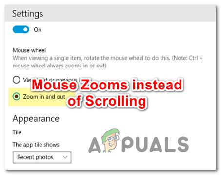 Wie kann man das Zoomen von Mäusen korrigieren, anstatt unter Windows 10 zu scrollen?