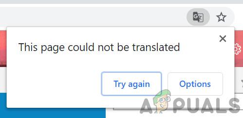Fix: Google Translate funktioniert nicht