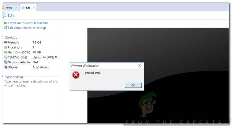Wie behebe ich den internen VMware-Fehler?