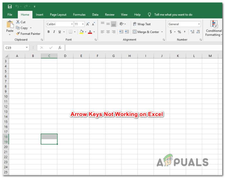 Fix: Pfeiltasten funktionieren in Excel nicht