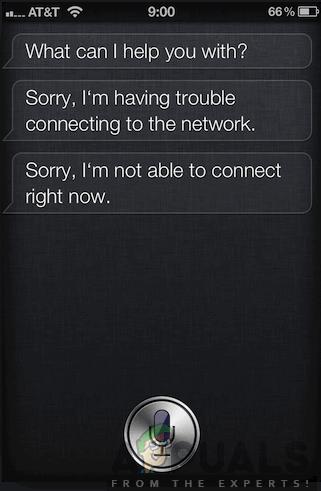 Fix: Siri kann keine Verbindung zum Netzwerk herstellen