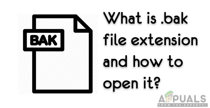 Was ist: '.bak' Dateierweiterung und wie öffnet man sie?