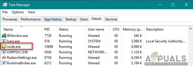Was ist: Node.JS Ausführbare Datei 'node.exe'