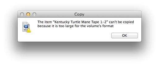 """So beheben Sie den Fehler """"Das Element kann nicht kopiert werden, da es für das Formatformat des Volumes zu groß ist"""""""