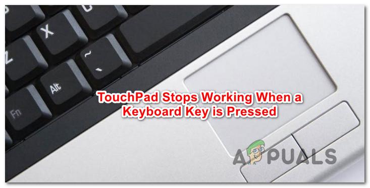 So beheben Sie, dass das Touchpad beim Halten einer Tastaturtaste nicht funktioniert