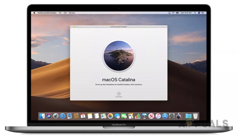 So importieren Sie Fotos und Videos von GoPro nach MacOS