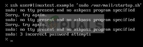 Behoben: sudo: kein tty vorhanden und kein askpass Programm angegeben