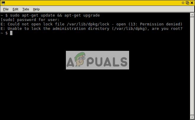 Fix: Die Sperrdatei / var / lib / dpkg / lock konnte nicht geöffnet werden