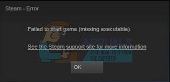 Fix: Spiel konnte nicht gestartet werden (fehlende ausführbare Datei)