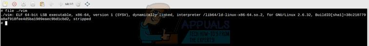 """Behebung von """"Binärdatei kann nicht ausgeführt werden: Formatfehler ausführen"""" unter Ubuntu"""