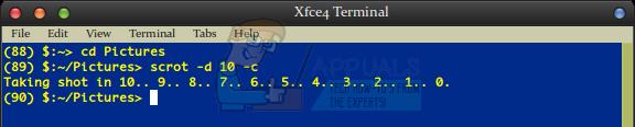 So machen Sie Screenshots über die Linux-Befehlszeile
