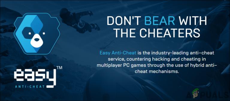 Was ist Easy Anti-Cheat und warum befindet es sich auf meinem Computer?
