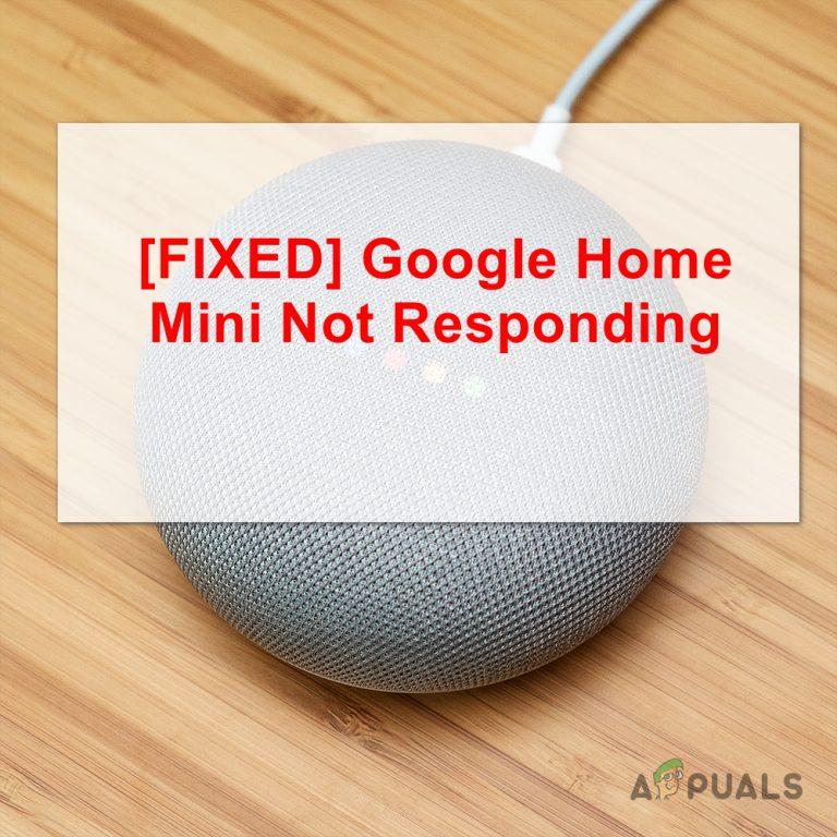 Google Home Mini reagiert nicht auf Sprachbefehle