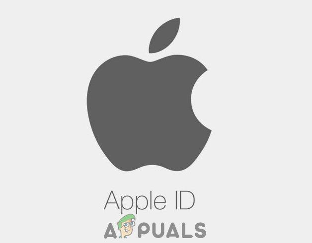 So setzen Sie das Apple-ID-Passwort zurück